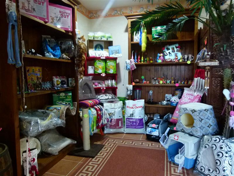 Cat Shop - Special prices all year round.